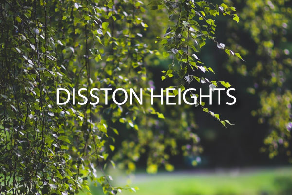 ~disston-heights